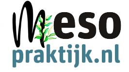 Logo mesopraktijk